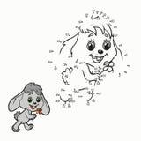 Nummerlek (kanin) Royaltyfria Bilder