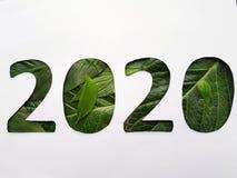 numrera 2020 med grön bladtextur och vitbakgrund arkivbild