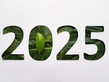 numrera 2025 med grön bladtextur och vitbakgrund arkivbilder