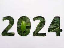 numrera 2024 med grön bladtextur och vitbakgrund royaltyfri fotografi