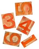 numrerar typ trä för orange red Arkivfoto