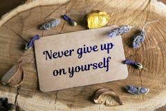 Nunca abandone en sí mismo Imagen de archivo libre de regalías