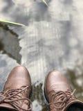 Nunca demasiado frio para estar na água Imagens de Stock
