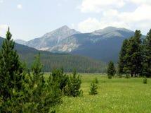 Nunca montanhas do verão, Pa nacional da montanha rochosa Foto de Stock