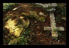 Nunhead Cemetery 1 Royalty Free Stock Image