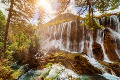 The Nuo Ri Lang Waterfall Nuorilang among fall woods. Amazing view of the Nuo Ri Lang Waterfall Nuorilang among colorful fall woods in Jiuzhaigou nature reserve Royalty Free Stock Photo