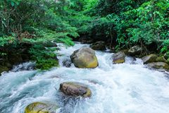Nuoc Mooc wiosna - Mooc strumień Phong Nha Ke Łomota parka narodowego fotografia stock