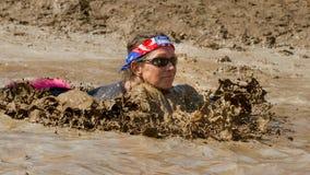Nuotando attraverso il letame Fotografie Stock Libere da Diritti