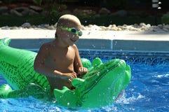 Nuotando con il coccodrillo Fotografia Stock