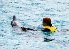 Nuotando con il delfino Immagine Stock