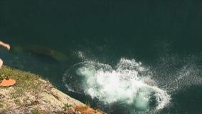 Nuotando in un lago della montagna video d archivio
