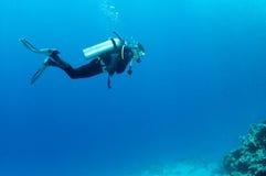 Nuotata degli operatori subacquei di scuba sopra la barriera corallina Fotografia Stock
