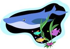 Nuotata dei pesci e della balena Fotografie Stock Libere da Diritti