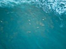 Nuotata dei surfisti in acqua blu Fotografie Stock Libere da Diritti