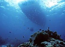 Nuotata della barca Fotografia Stock