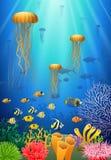 Nuotata delle meduse nel underwater royalty illustrazione gratis