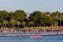 Nuotata di Ironman in Alcudia immagini stock
