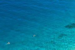Nuotata di libertà Fotografie Stock Libere da Diritti