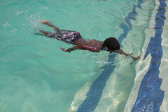 Nuotata di nuotata di scossa di scossa Fotografia Stock