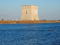 Nuotata Torre Chianca Obraz Stock