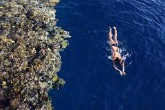 Nuotate della ragazza con immergersi nel mare fotografia stock libera da diritti