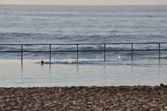 Nuotatore di primo mattino Fotografia Stock