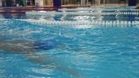 Nuotatore maschio che esegue il colpo di farfalla video d archivio