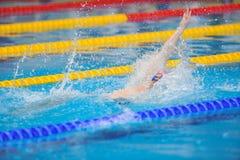 Nuotatore sconosciuto che fa concorrenza nello stagno di Dinamo nel nuoto internazionale rumeno di campionato Immagini Stock