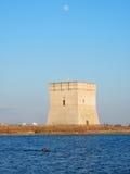 Nuotatore Torre Chianca Zdjęcie Royalty Free