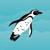 Nuoto africano del pinguino del fumetto sveglio nel mare Immagini Stock