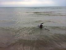 Nuoto a cane Fotografia Stock