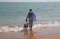 Nuoto a cane Fotografia Stock Libera da Diritti
