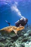 Nuoto del subaqueo con la tartaruga Immagini Stock Libere da Diritti