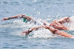 Nuoto dell'open water Immagini Stock