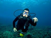 Nuoto dell'operatore subacqueo sopra una scogliera in Kona Hawai Fotografie Stock