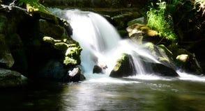 Nuoto della cascata di giorno del Canada Fotografia Stock
