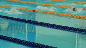 Nuoto della concorrenza di sport nello stagno Immagine Stock Libera da Diritti