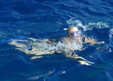 Nuoto della donna nell'oceano Fotografia Stock