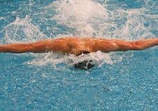 Nuoto della farfalla Fotografia Stock Libera da Diritti