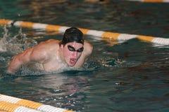 Nuoto della farfalla Fotografie Stock