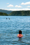 Nuoto della ragazza con i cigni fotografia stock