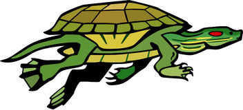 Nuoto della tartaruga Immagini Stock Libere da Diritti