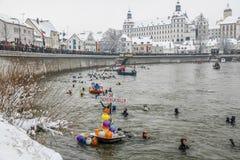 Nuoto di inverno Immagine Stock