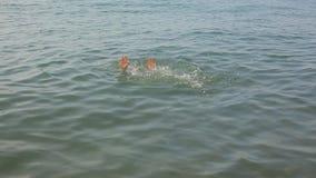Nuoto nel mare, resto dell'uomo sull'acqua stock footage