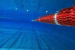 Nuoto-poo? immagini stock libere da diritti