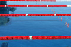 Nuoto-poo? immagine stock