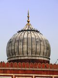 Nuova Delhi: Moschea di Jama Masjid, il più grande in India fotografia stock