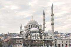 Nuova moschea Fotografia Stock
