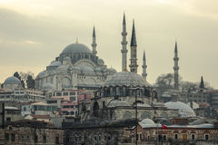 Nuova moschea Fotografie Stock