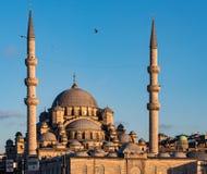 Nuova moschea in Instanbul Fotografie Stock Libere da Diritti